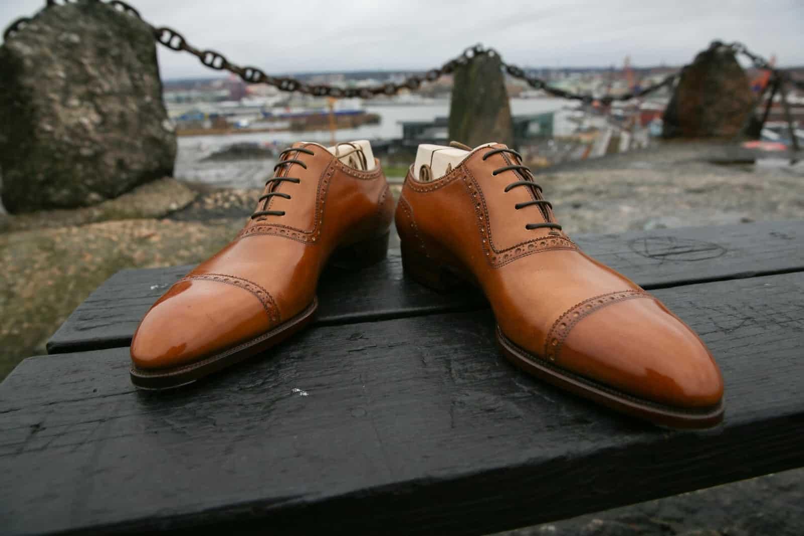 shoegazing.seskobibliotekj fitzpatrick fremont